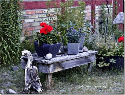 Trädgårdsstilleben