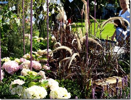 hortensiaostrå vtnm