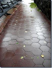Wet Barefoot Run 9761