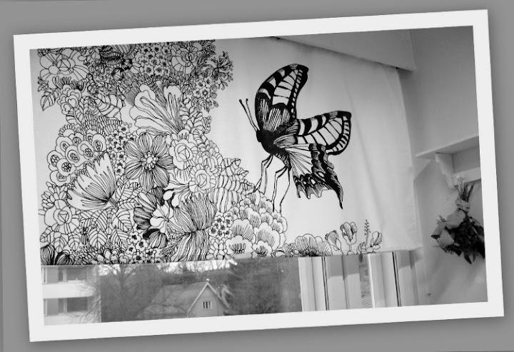 Kaksi Kaunista Perhoset lentää sun keittiöön