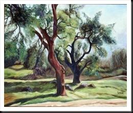 alcornoques viejos-oleo 70 x 60