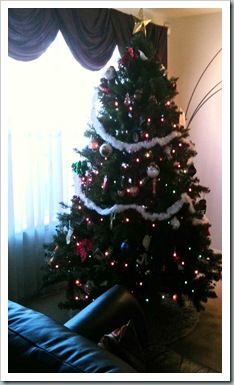 ChristmasTtree2010