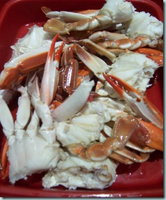 Sand Crabs