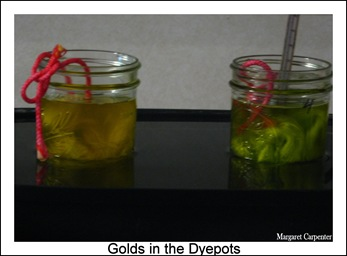 Golds in the dyepot