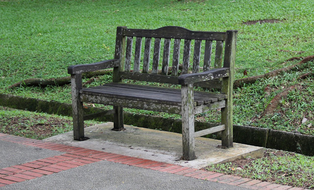 lovely and lonely benches