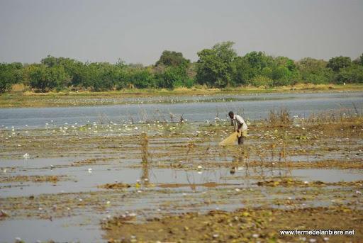 pêche sur une retenue d'eau pluviale