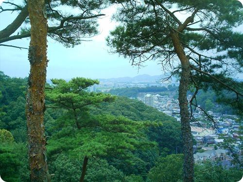 ashikaga hike 005