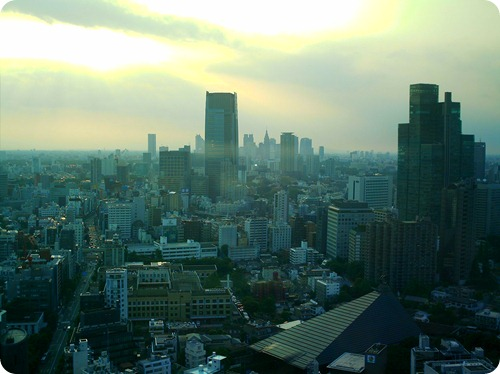 tokyo days 051