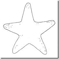 disfraz de estrella (2)