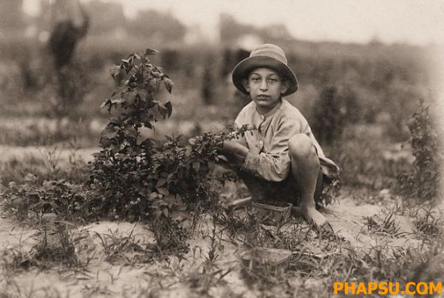 child_labor_in_640_43.jpg