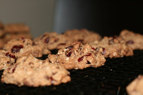 Chocolate cranberry oatmeal spice cookies