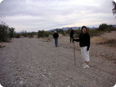 desert-group-walking