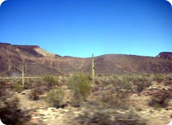 q-landscape