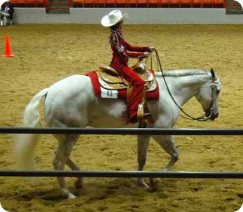 37-horse-winner