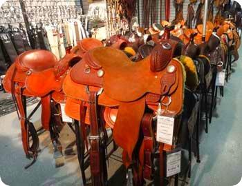 38-saddle
