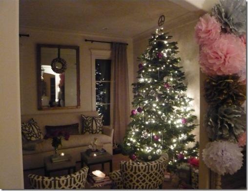 CHRISTMAS  2009 101[1]