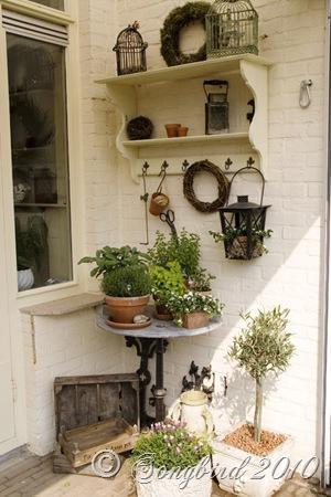 Herb Garden6