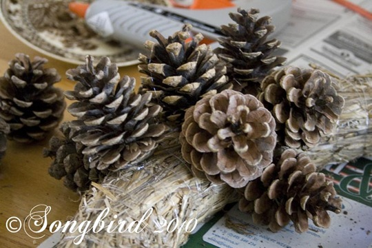Pine Cone Wreath 5
