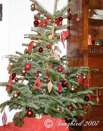 Christmas tree 2007