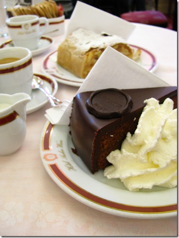 sacher2