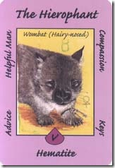 Australian Animal Tarot (5)