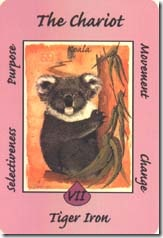 Australian Animal Tarot (7)