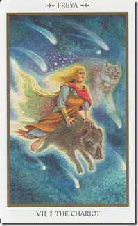 Animals Divine Tarot (7)