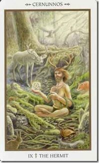 Animals Divine Tarot (9)