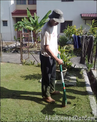 Mesin rumput guna grass trimmer elektrik