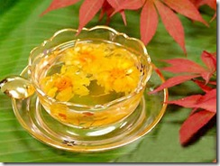 Chrysanthemum tea 01