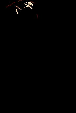 v0021