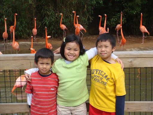 Rachel ngan and edison chen [edison chen and rachel ngan >> rachel ngan and ...