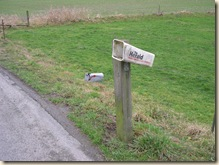 Downed mailbox