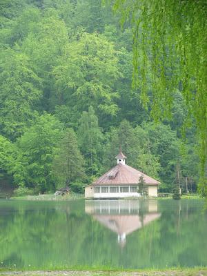 mogosai tó