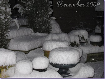 My back garden just befreo Christmas 2009 showing the sudden 6-8 inch snowfall.