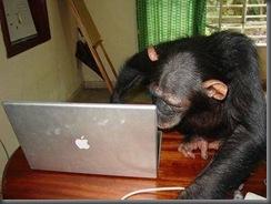 monyet cewek facebook lagi narsis