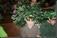 bergtree