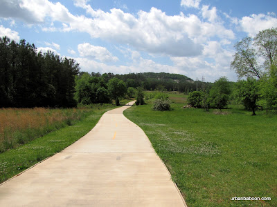 PATH: Arabia Mountain Bike Trail