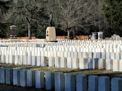 Andersonville Prison's Dead