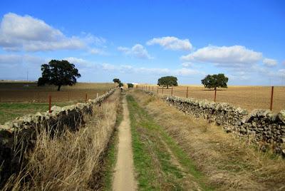 camino cucharera en Pozoblanco