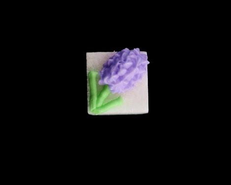 hyacinth close upedit.jpg
