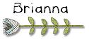 Signature_Brianna