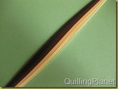 QuillingPlanet_4742