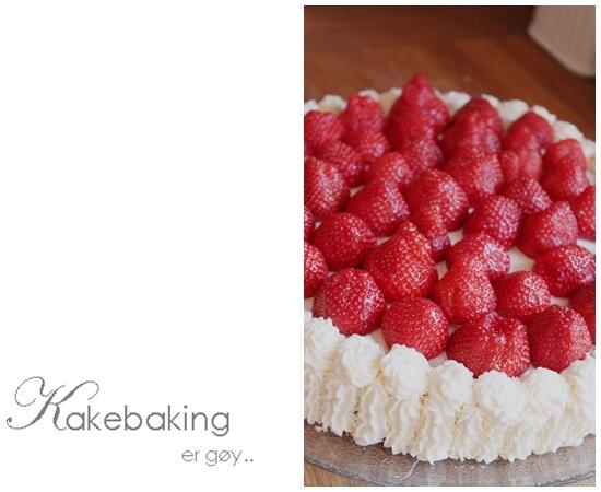 Kakebaking er gøy-blogg