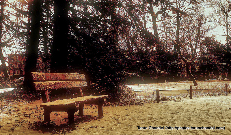 Roosendaal Park Waiting Bench Snow Covered Netherlands Holland Dutch, Tarun Chandel Photoblog