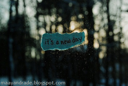 novo dia