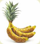 Pinanas