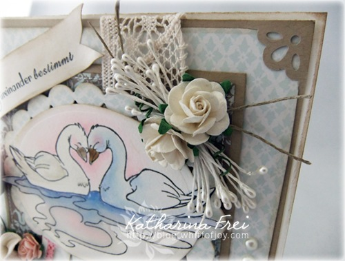 LoveSwans2