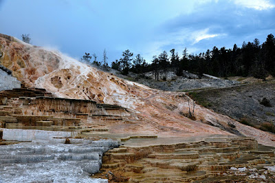 lower terraces at Mammoth Hot Springs in Yellowstone National Park