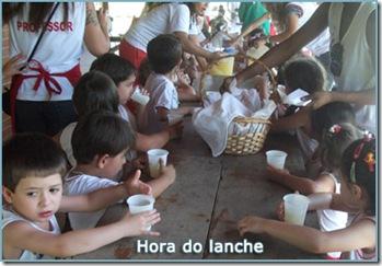 08-sitio-picapau-lanche-creche-escola-ladybug-recreio